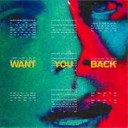 Details 5 Seconds Of Summer - Want you back