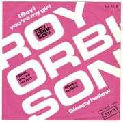 Coverafbeelding Roy Orbison - (Say) You're My Girl