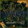 Details Armin van Buuren feat. Sam Martin - Wild Wild Son