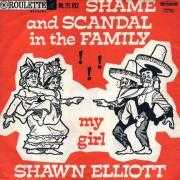 Coverafbeelding Shawn Elliott - Shame And Scandal In The Family!!!