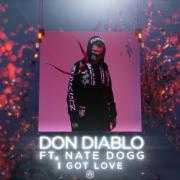 Coverafbeelding Don Diablo ft. Nate Dogg - I Got Love