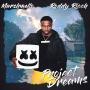 Coverafbeelding Marshmello & Roddy Ricch - Project Dreams