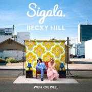 Coverafbeelding Sigala & Becky Hill - Wish You Well