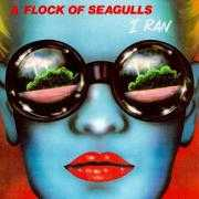 Coverafbeelding A Flock Of Seagulls - I Ran