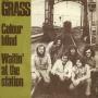 Coverafbeelding Grass - Colour Blind