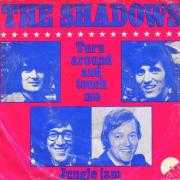 Details The Shadows - Turn Around And Touch Me