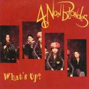 Coverafbeelding 4 Non Blondes - What's Up?