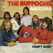 Details The Buffoons - Arizona