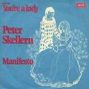 Coverafbeelding Peter Skellern - You're A Lady