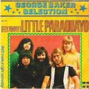 Coverafbeelding George Baker Selection - (Fly Away) Little Paraquayo