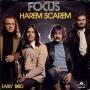 Details Focus - Harem Scarem