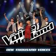 Details The Voice Of Holland - One thousand voices