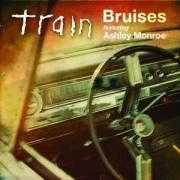 Details train featuring ashley monroe - bruises