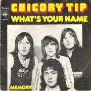 Details Chicory Tip - What's Your Name