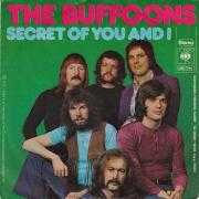 Coverafbeelding The Buffoons - Secret Of You And I