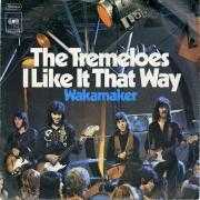 Coverafbeelding The Tremeloes - I Like It That Way