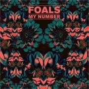 Details foals - my number