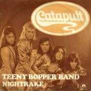 Details Catapult - Teeny Bopper Band