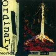 Coverafbeelding Duran Duran - Ordinary World