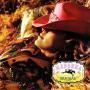 Details Madonna - Music
