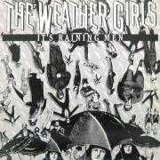 Details The Weather Girls - It's Raining Men
