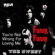 Coverafbeelding The Sweet - Funny, Funny