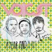 Details Voicst - A year and a bit