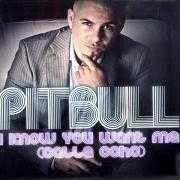 Details Pitbull - I know you want me (Calle ocho)