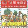 Coverafbeelding De Heikrekels - Blijf Van Me Houden!