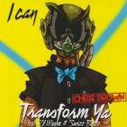 Coverafbeelding Chris Brown feat. Lil Wayne & Swizz Beatz - I can transform ya
