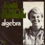 Details Loeki Knol - Algebra