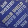 Coverafbeelding Don Downing - Dream World