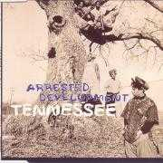 Coverafbeelding Arrested Development - Tennessee
