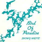Details Snowy White - Bird Of Paradise