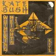 Details Kate Bush - Wuthering Heights