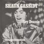 Details Shaun Cassidy - Hey Deanie