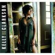 Details Kelly Clarkson - Never Again