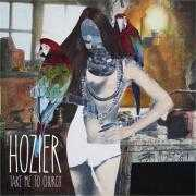 Details Hozier - Take me to church