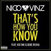 Coverafbeelding Nico & Vinz feat. Kid Ink & Bebe Rexha - That's how you know