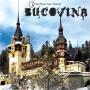 Coverafbeelding Ian Oliver feat. Shantel - Bucovina