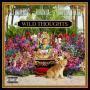 Details DJ Khaled feat. Rihanna & Bryson Tiller - Wild thoughts