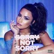 Details Demi Lovato - Sorry not sorry