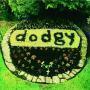 Coverafbeelding Dodgy - Good Enough