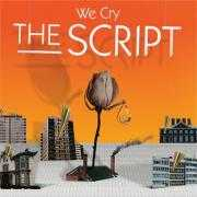 Coverafbeelding The Script - we cry