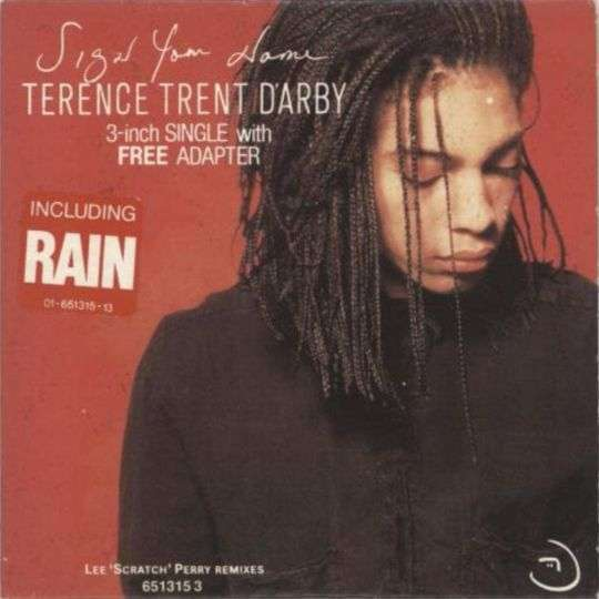 Coverafbeelding Rain [Lee 'scratch' Perry Remix] - Terence Trent D'arby