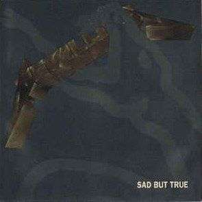 Coverafbeelding Sad But True - Metallica