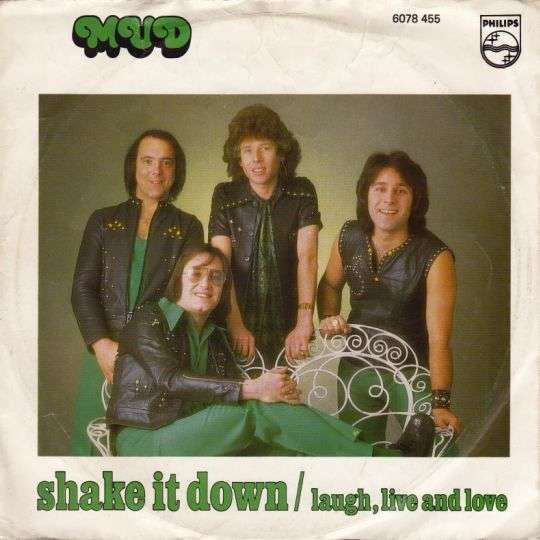 Coverafbeelding Shake It Down - Mud