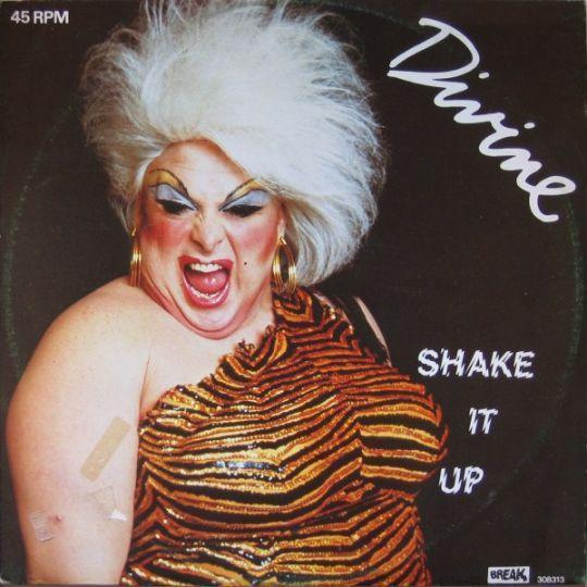 Coverafbeelding Divine ((= Harris Glenn Milstead)) - Shake It Up