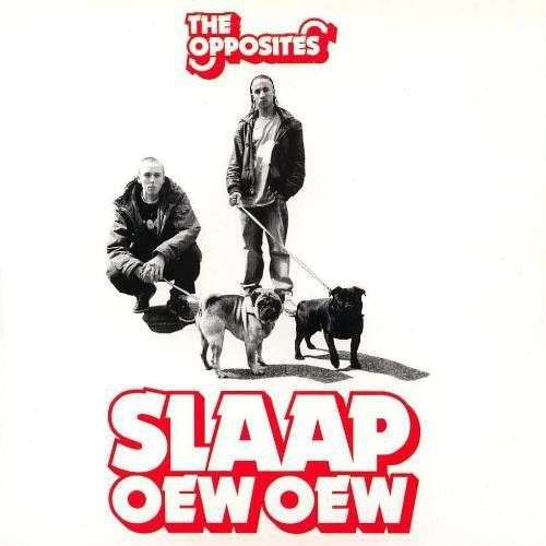 Coverafbeelding Slaap - The Opposites