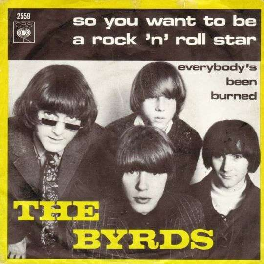 Coverafbeelding So You Want To Be A Rock 'n' Roll Star - The Byrds